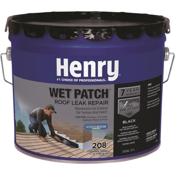 Henry HE208061