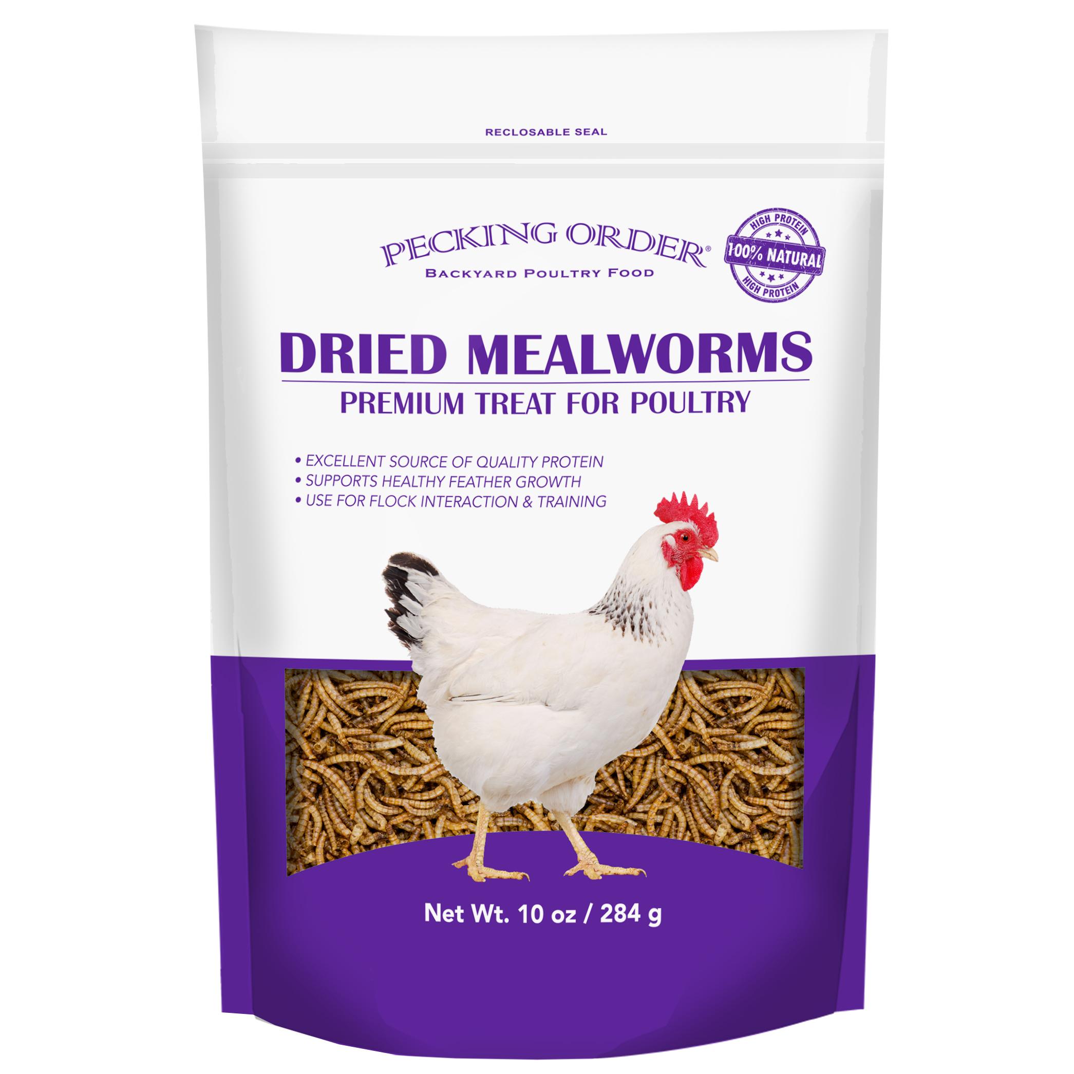Pecking Order 009351