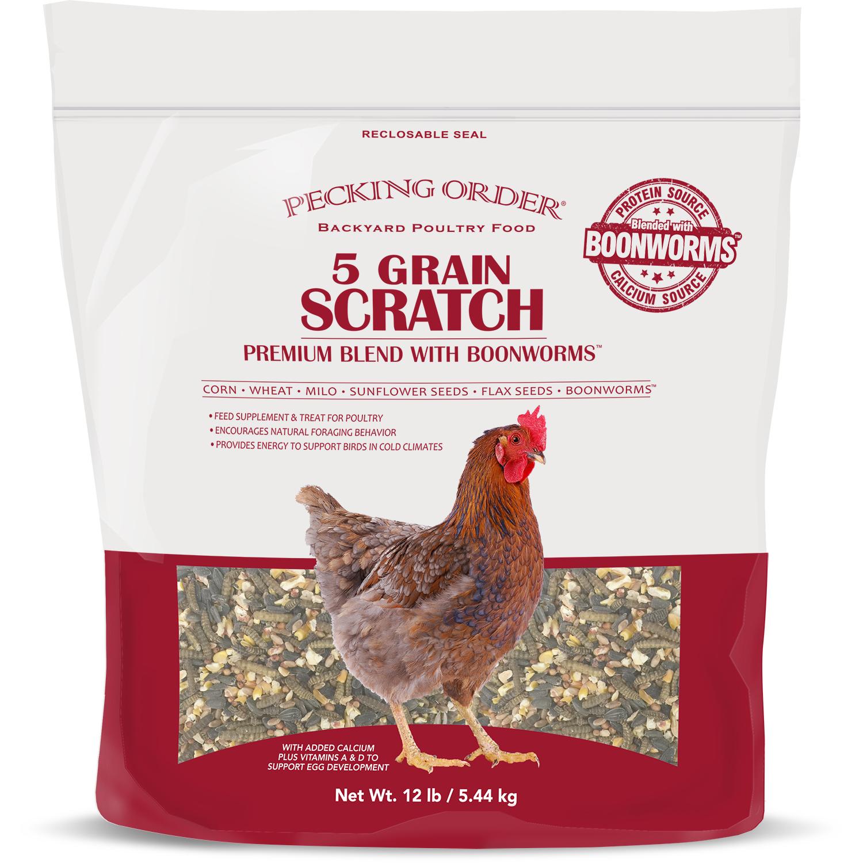 Pecking Order 009352