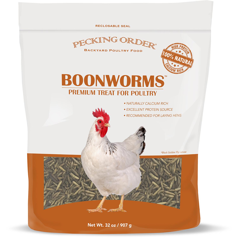Pecking Order 009354