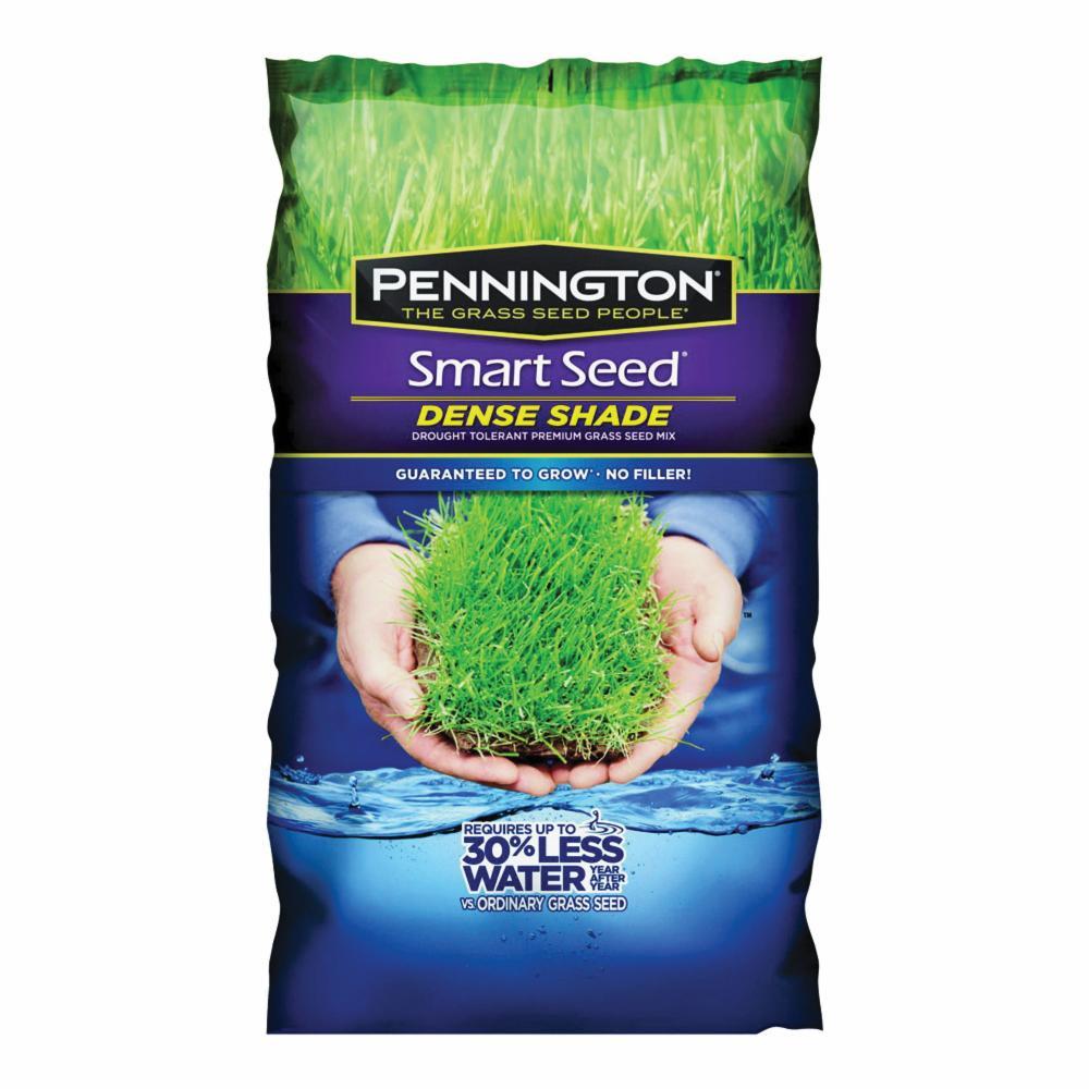 Pennington 100526627