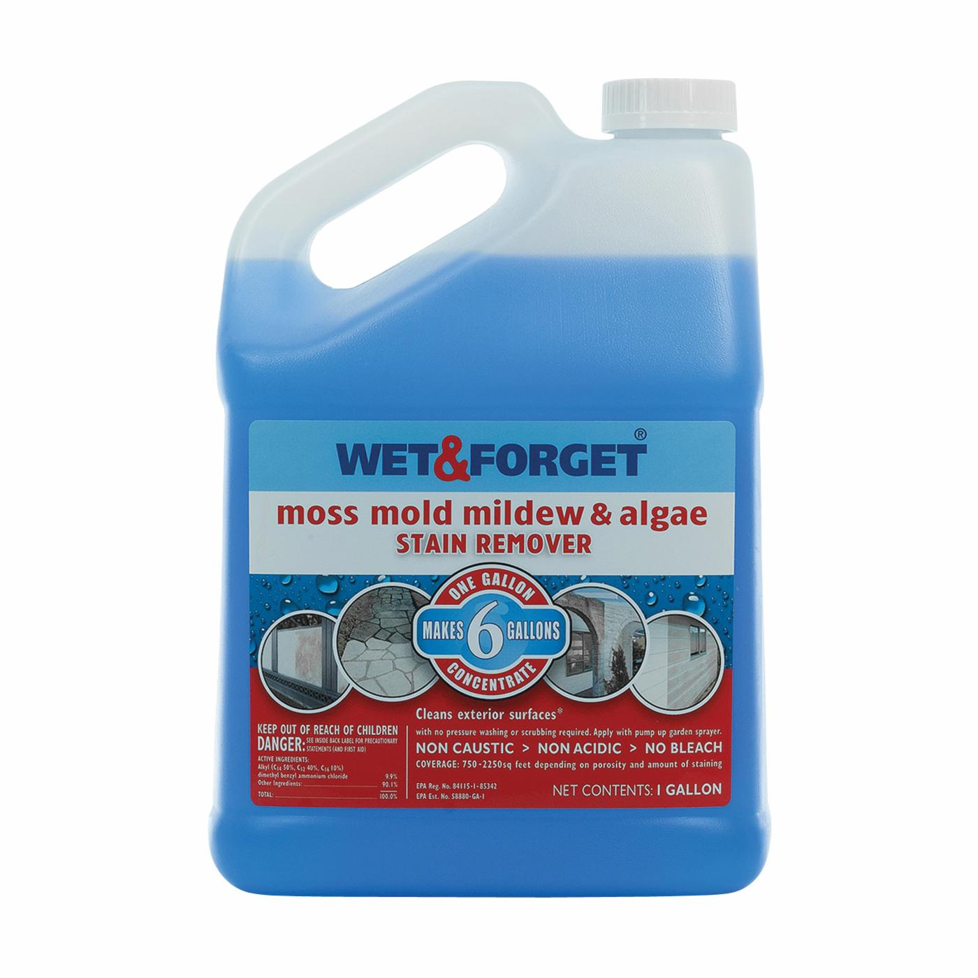 WET & FORGET 800006
