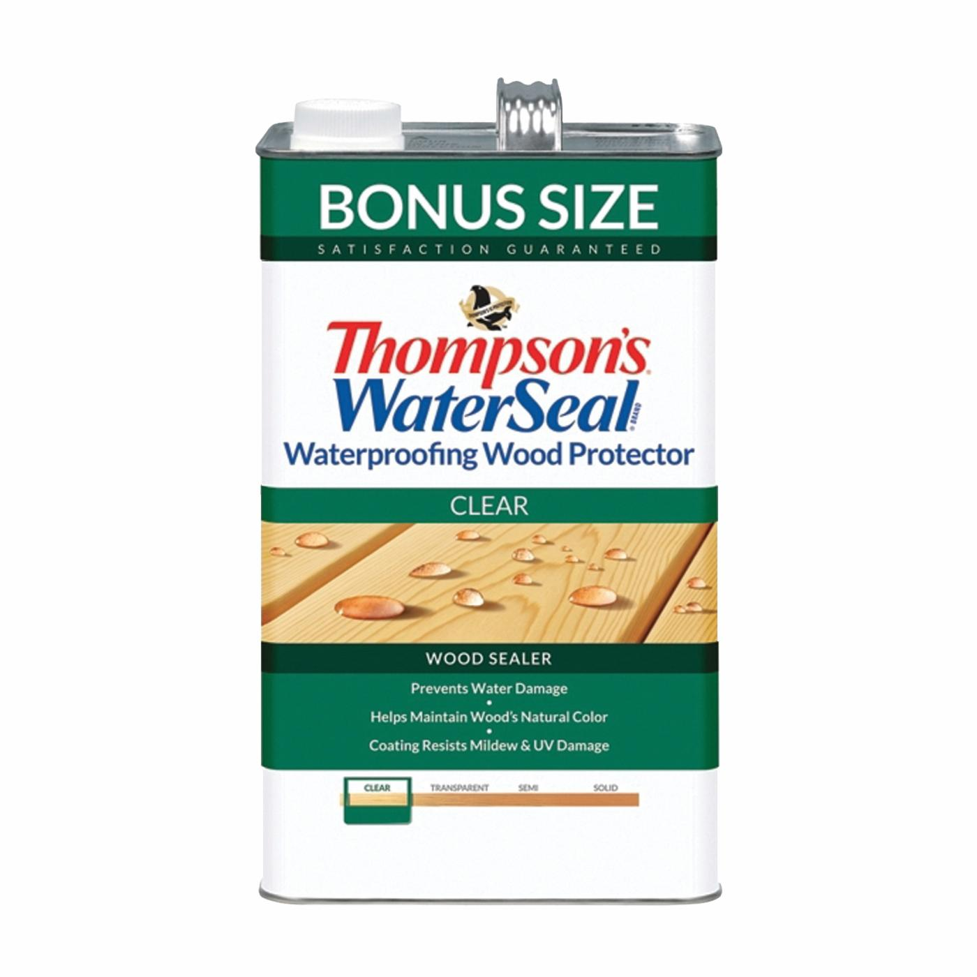 Thompson's Waterseal TH.021802-03